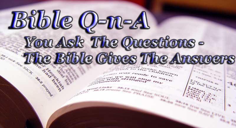 Bible QnA Logo